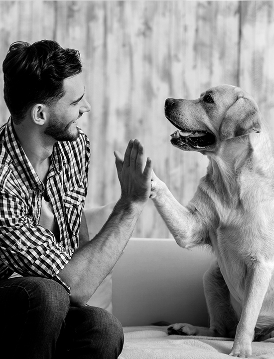 Guy with his dog giving a high five.